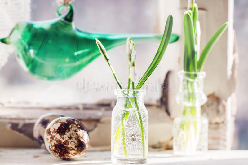 Easter interior with snowdrops and quail eggs royalty free stock photography