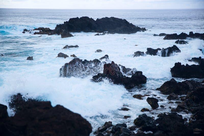 Easter Island rocky coast. stock image