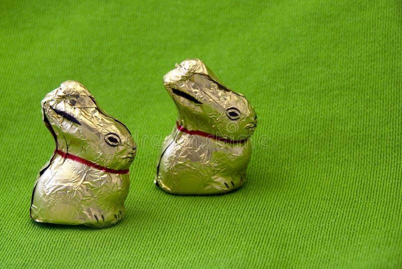 easter kaniner royaltyfria bilder