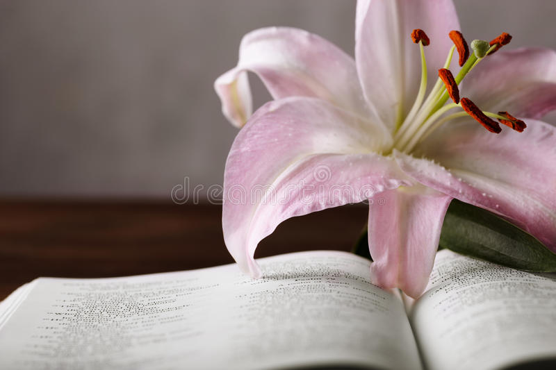 Download Easter lily and bible stock photo. Image of christ, book - 16574738
