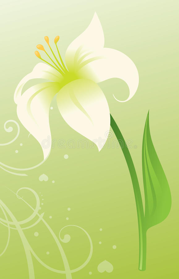 Easter Lily stock illustration