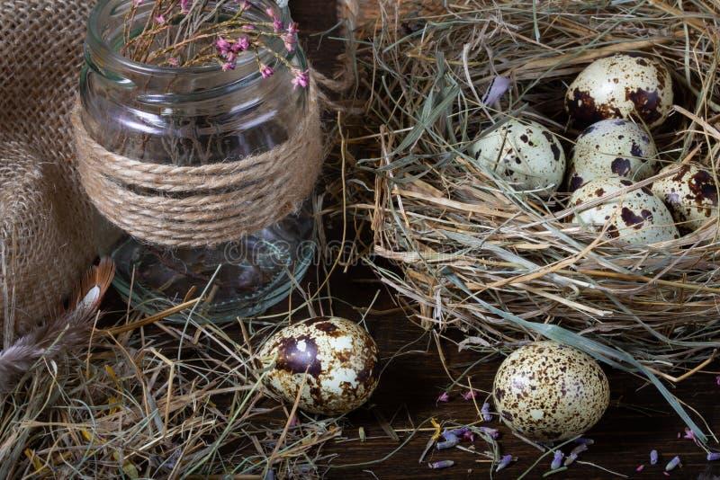 easter livstid fortfarande Vaktelägg i redet och på den gamla trätabellen i ladugården bland hö och torkade blommor royaltyfri bild