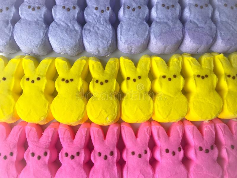 Easter marshmallow candy peeps royalty free stock photos