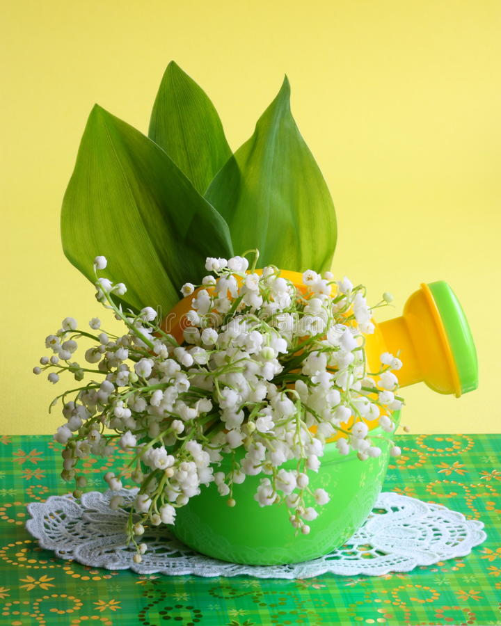 Easter , Mothers Day Card -Flower Stock Photo. Easter , Mothers Day Card : Flower Photo with spring lily-of-the-valley Flowers on Yellow Background stock images