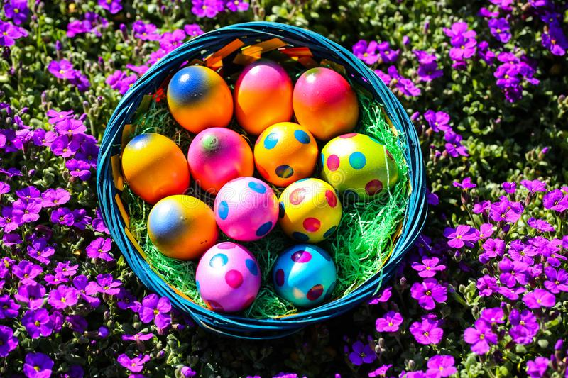 Easter nest with easter eggs in the garden. Symbol royalty free stock images