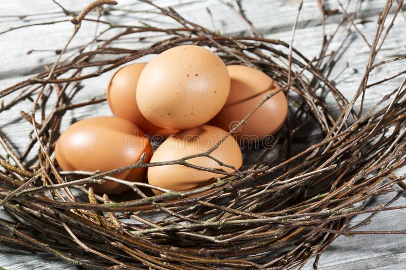 Easter nest, Easter eggs and twigs stock photography