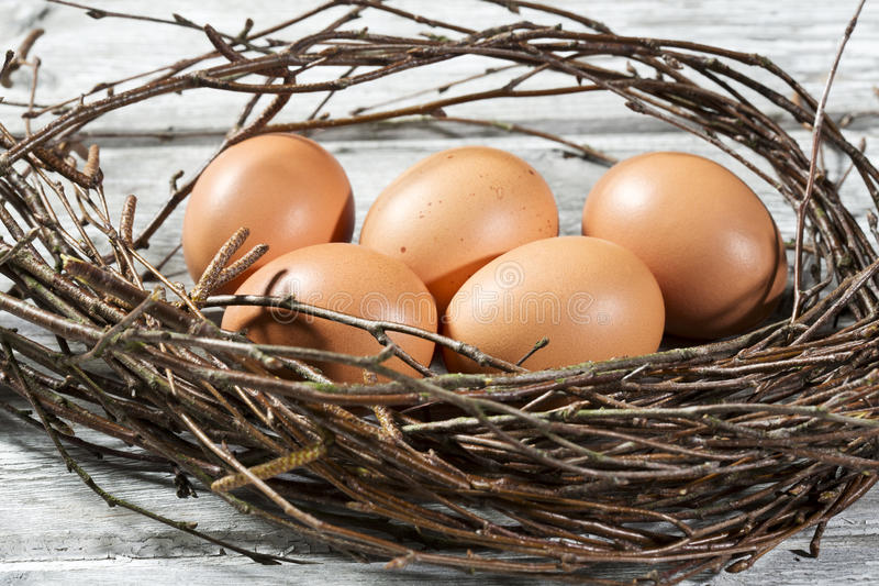 Easter nest, Easter eggs and twigs stock images