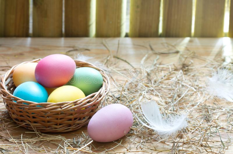 Easter organic colorful decoration eggs in chicken coop spring abstract background. Closeup royalty free stock image