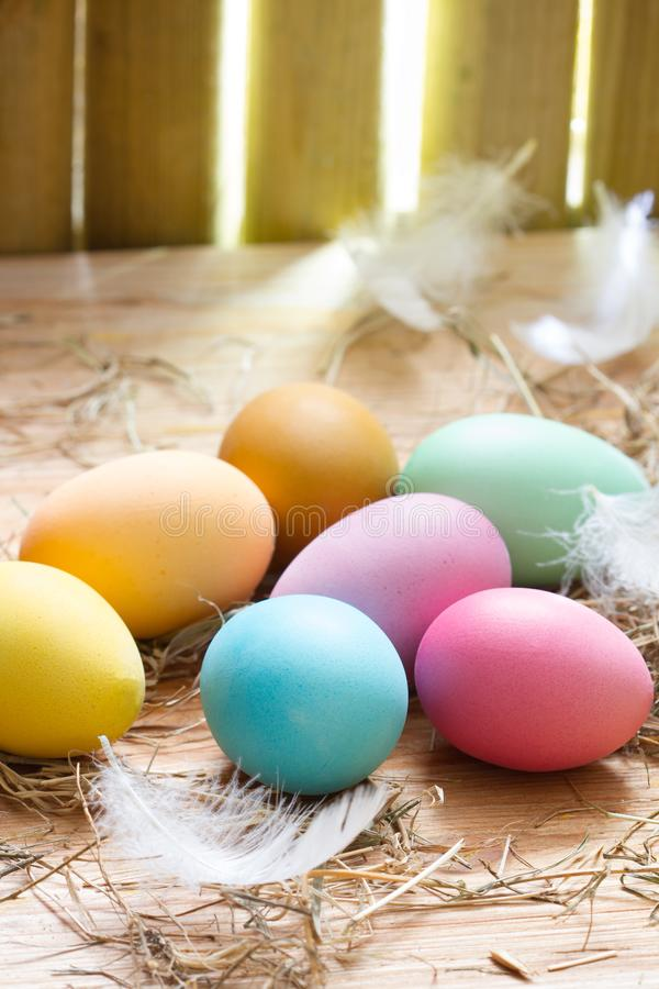 Easter organic colorful decoration eggs in chicken coop spring abstract background. Closeup royalty free stock images