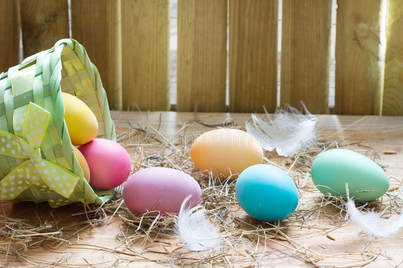 Easter organic colorful decoration eggs in chicken coop spring abstract background. Closeup royalty free stock photo