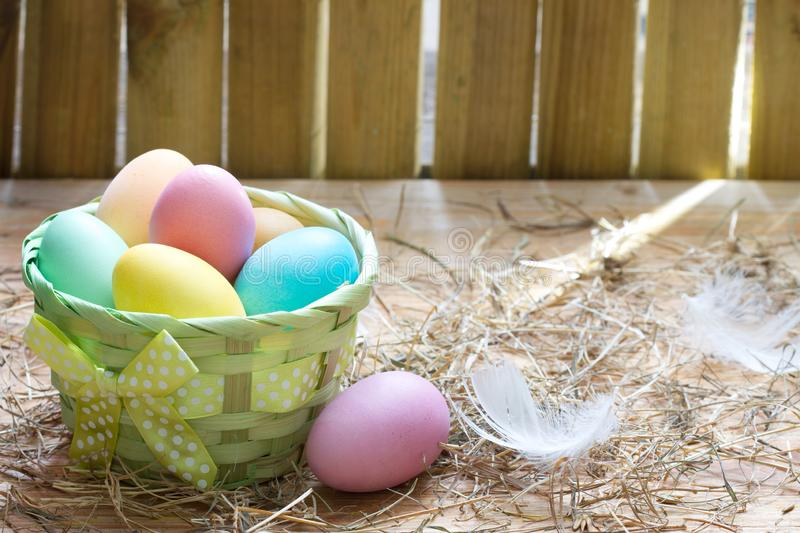 Easter organic colorful decoration eggs in chicken coop spring abstract background. Closeup stock photos