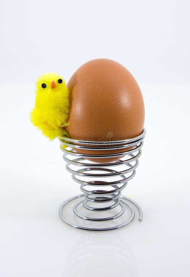 easter pisklęcy jajko zdjęcia stock