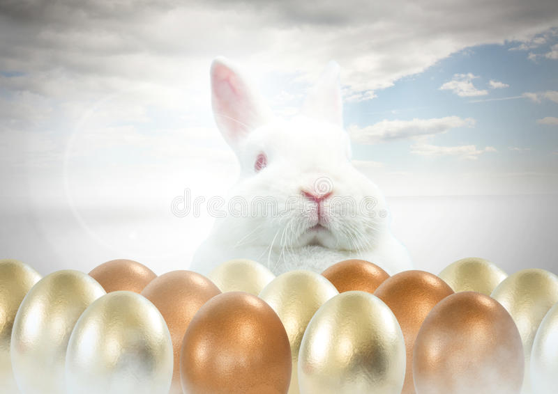 Easter rabbit with gold eggs in front of blue sky. Digital composite of Easter rabbit with gold eggs in front of blue sky vector illustration