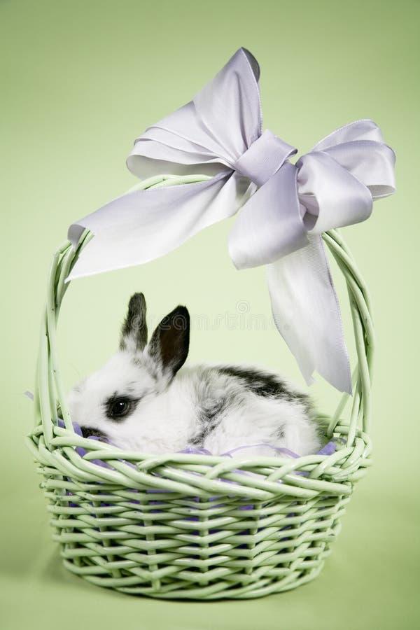 Easter Scene stock photo