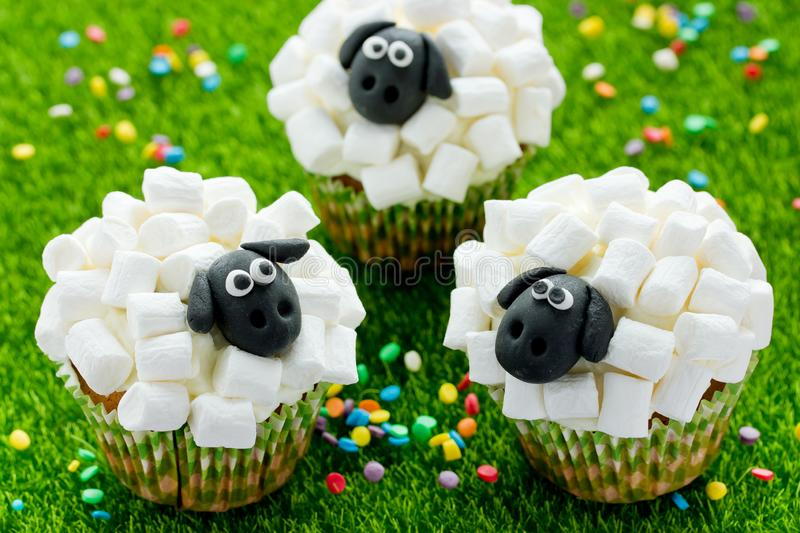 Easter sheep cupcakes on green grass background royalty free stock photo