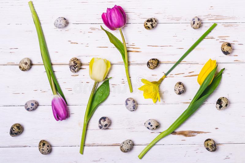 Easter Spring Floral Background. Multicolored flowers and quail eggs on white wooden boards royalty free stock image