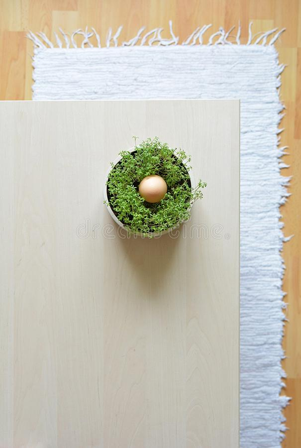 Spring still life with herbs in nordic styl royalty free stock photography