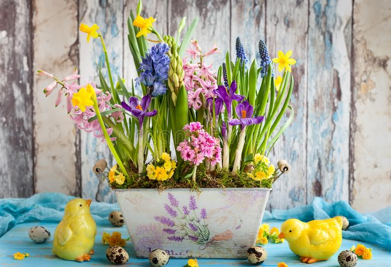 Easter still life with spring flowers, eggs royalty free stock images