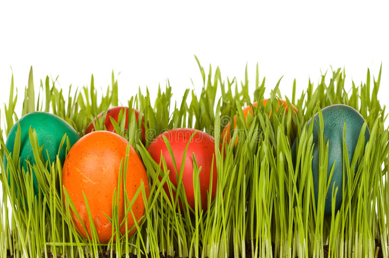 Easter symbols. Fresh wheat blades and dyed eggs - isolated stock photography