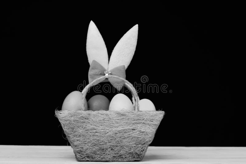 Easter symbols concept. Fluffy rabbit ears with colorful eggs. In green cloth basket. Bunny ears head band in pink color in basket on black background. Easter stock photo