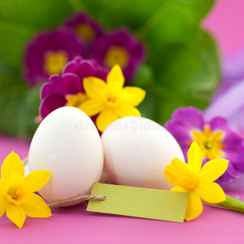 Download Easter time stock image. Image of filed, patchwork, blossom - 23737487