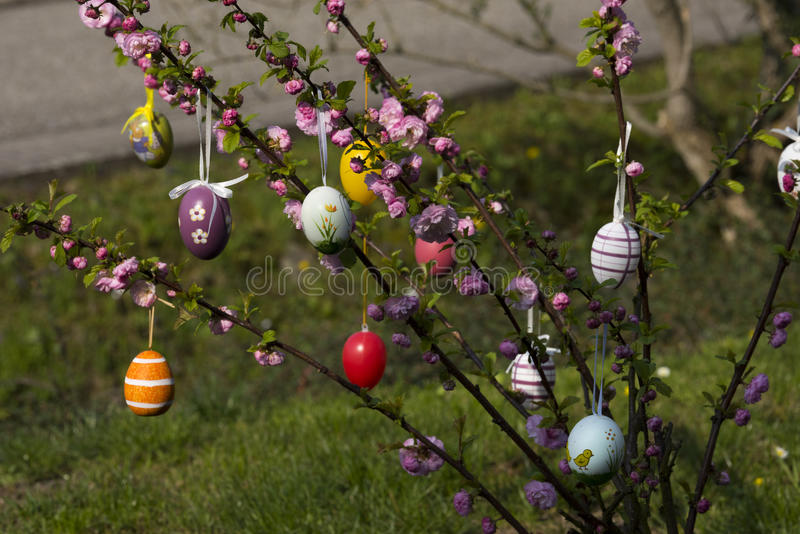 Easter tree in the garden. Easter tree decorated with colorful Easter eggs in the garden royalty free stock photography