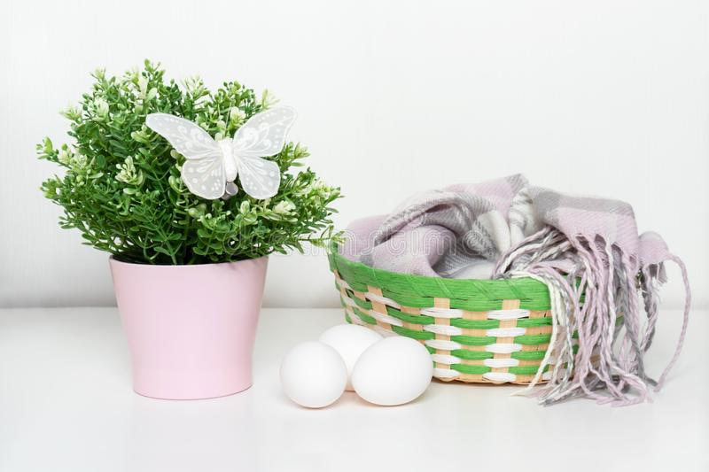 Easter white chicken eggs and green spring plant in flower pot, decorative butterfly and a basket with woolen scarf on white table stock image