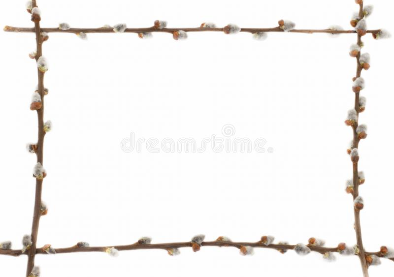 Easter willow frame royalty free stock images