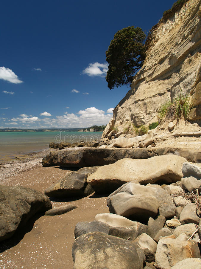 Download Eastern beach stock image. Image of green, zealand, cloud - 14862031