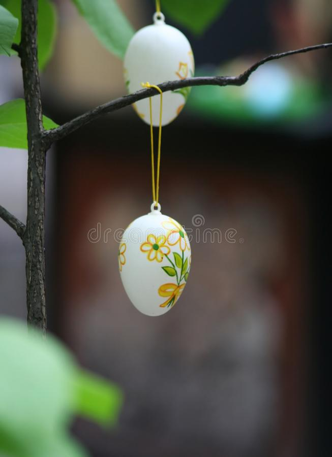 Eastern egg. Two eastern egg on a tree royalty free stock image