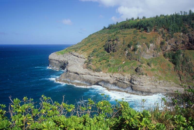 Eastern Kauai shoreline