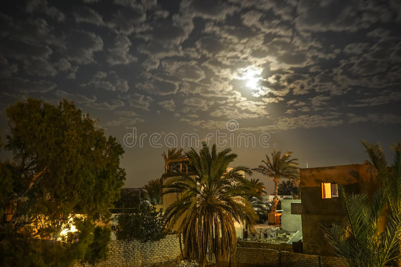 The Eastern night. Oriental courtyard with palm trees at night under a full moon royalty free stock photo