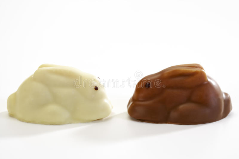 Eastern, white and brown chocolate easter bunnies, figurines stock image