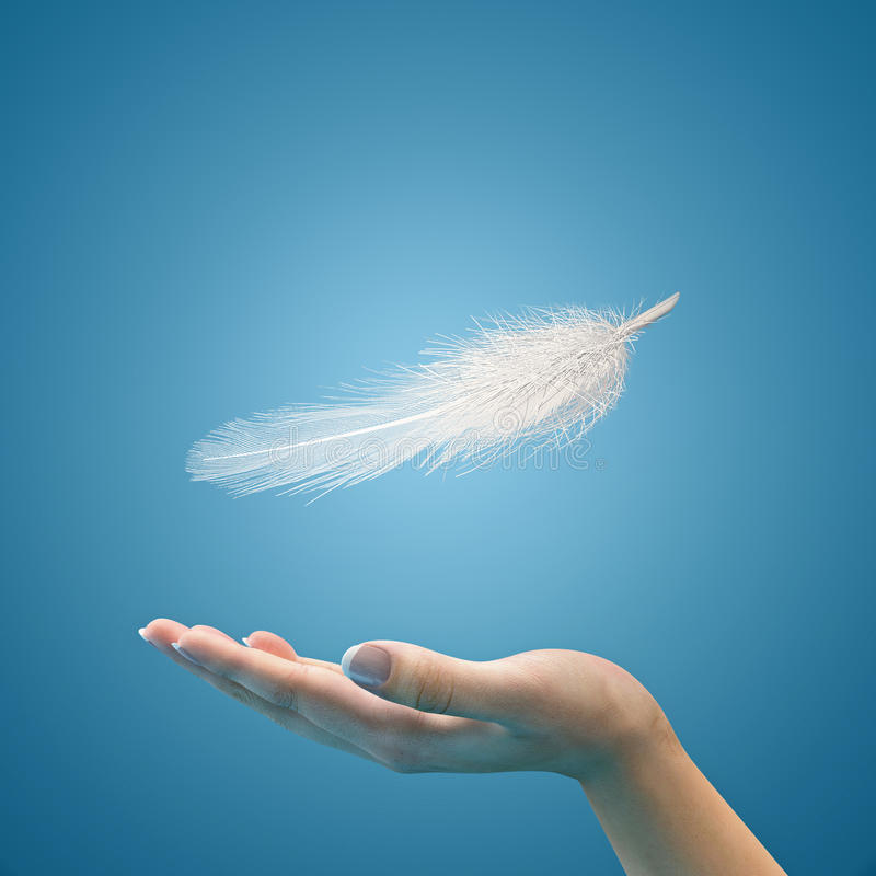 Easy feather in the air on the palm. Floating feather on hands of the woman. Blue background royalty free stock photos