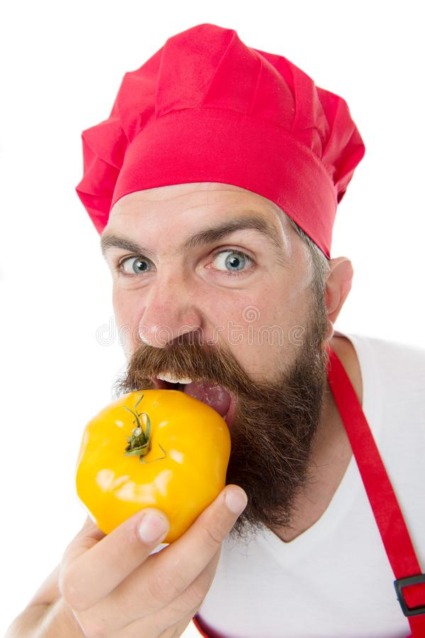 Eat fresh tomato. Tomato sauce recipe. Healthy cooking concept. Man with beard on white background. Chef holds tomatoes. Cook in uniform holds vegetables. Ripe royalty free stock photography