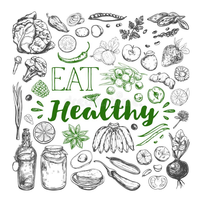Eat Healthy food. Vegetarian 3. Eat Healthy food. Vegetarian Big Set. Vector hand drawn isolated elements on white. Sketch style vector illustration