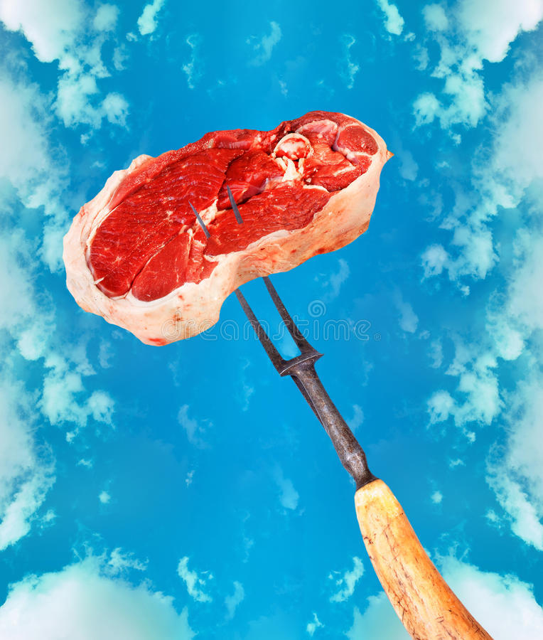 Eat the meat! royalty free stock images