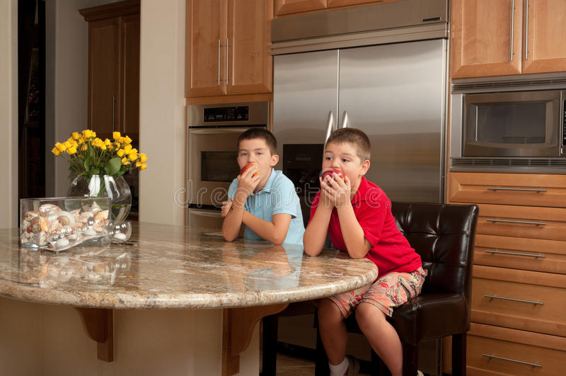 Download Eating Apple stock image. Image of organic, brother, kitchen - 20382575