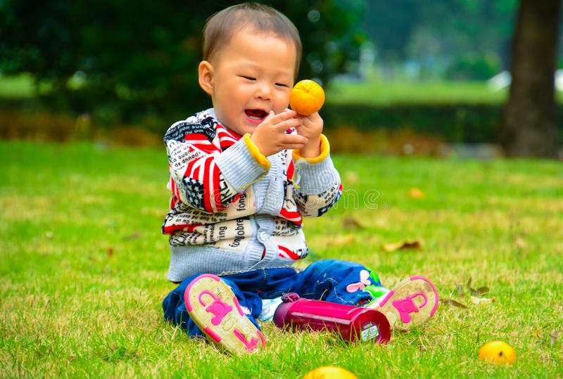 Eating fruit is good for health. Children in addition to eat ordinary food but also eat fruit, fruit is every baby likes to eat the nutrition and health of small stock photo