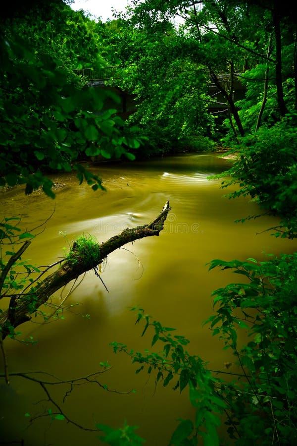 Eau de rivière images stock