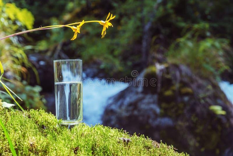Eau de source propre dans un verre photo libre de droits