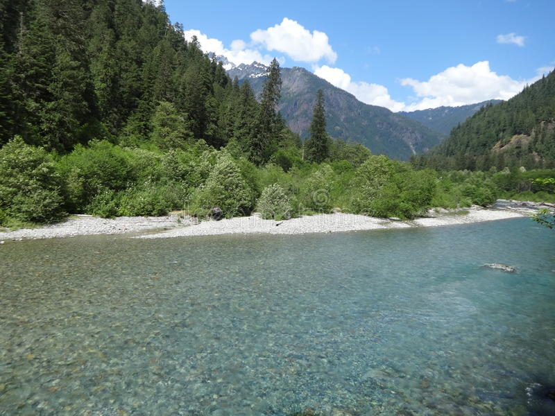 Eau froide entrant dans une rivière de montagne en cascades du nord images libres de droits