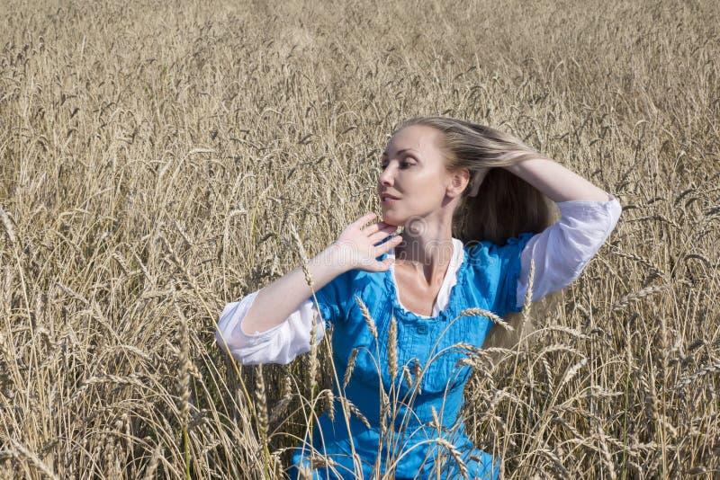 Eautiful kvinna i en blå lång klänning i fältet av mogna sädesslag fotografering för bildbyråer