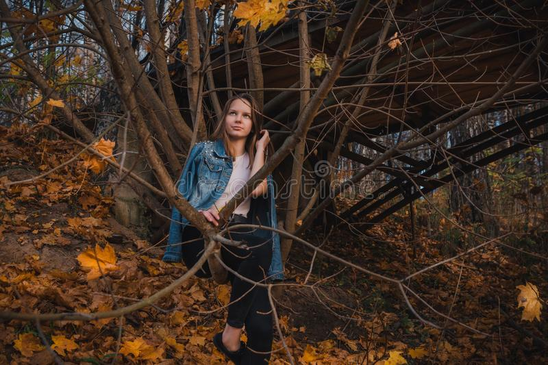 Eautiful young girl with long dark brown hair sits on a tree branch in the autumn park. Beautiful young girl with long dark brown hair sits on a tree branch in stock photo