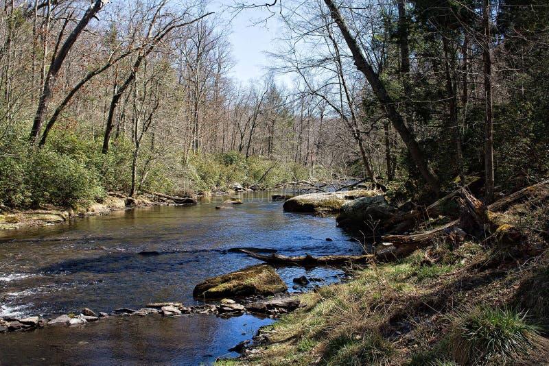 Eaux de plus près de la source de rivière de poudre photos stock
