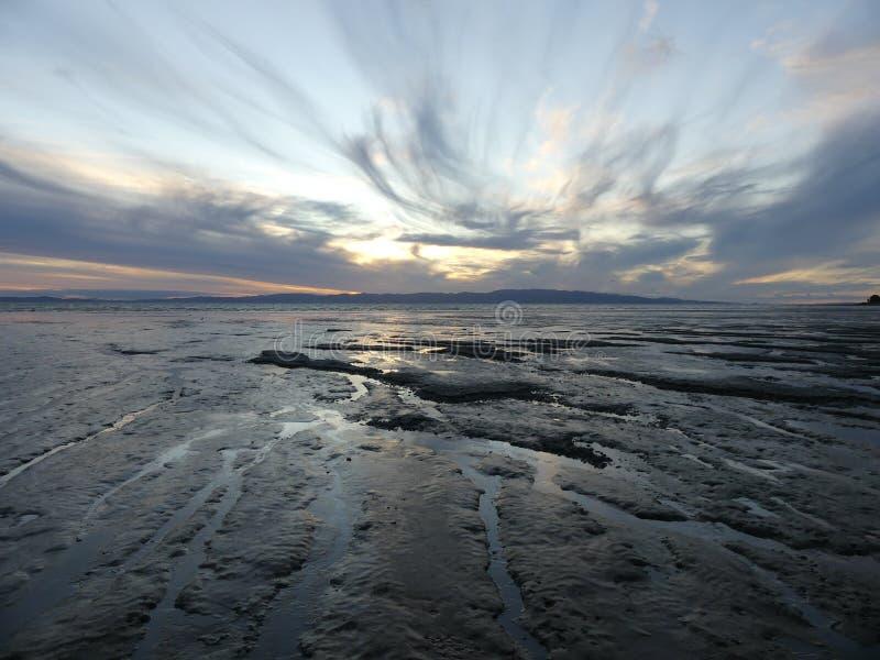 Eb bij zonsondergang stock fotografie