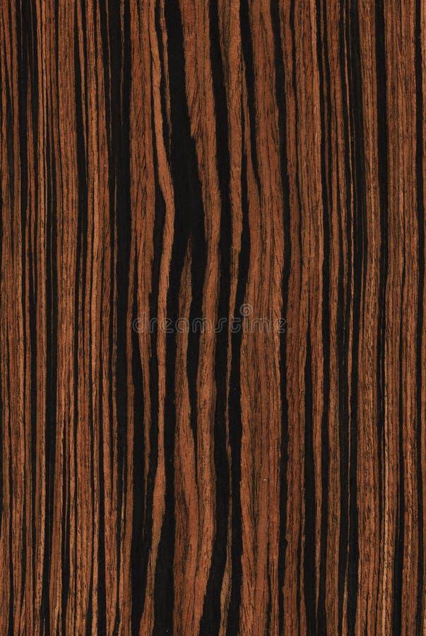 Ebbehout (houten textuur) royalty-vrije stock foto