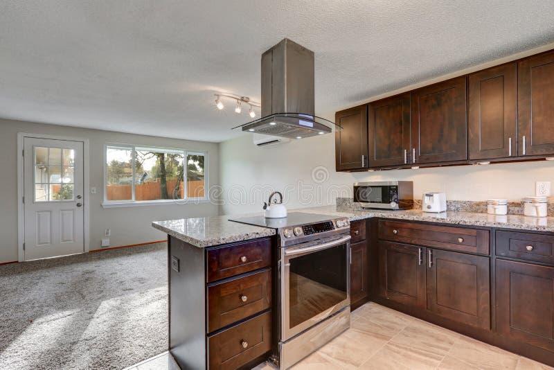 Eben erneuerte Küche mit dunklem hölzernem Cabinetry stockbild