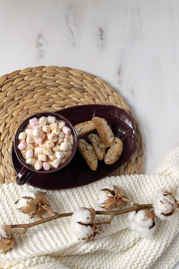 Ebene der heißen Schokolade des Winters gelegt - heiße Schokolade mit Eibischen, Plätzchen, getrocknete Baumwollniederlassung auf stockfoto