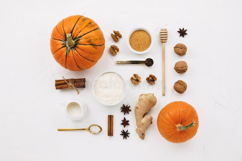 Ebene legen mit verschiedenen Kürbisen, Zimtstange, Mehl, Gewürzen, Rohrzucker und anderen Kürbiskuchenbestandteilen stockbild